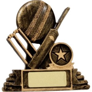 Cricket Ball, Bat & Stumps 100mm