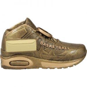 Basketball Shoe Trophy
