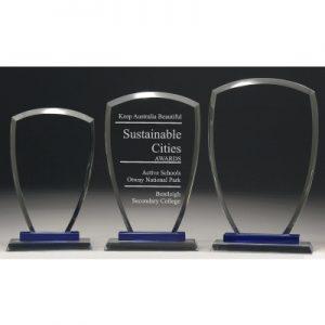 Blue Shield Award