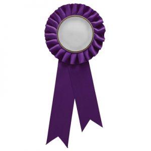 Purple Rosette w/ Clip 210mm