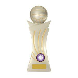 768-8C: Curve Ball-Netball