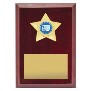 Star Plaque – Gold