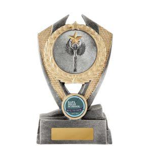 W21-5801: Hero Shield-Achievement